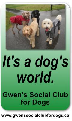 Gwen's